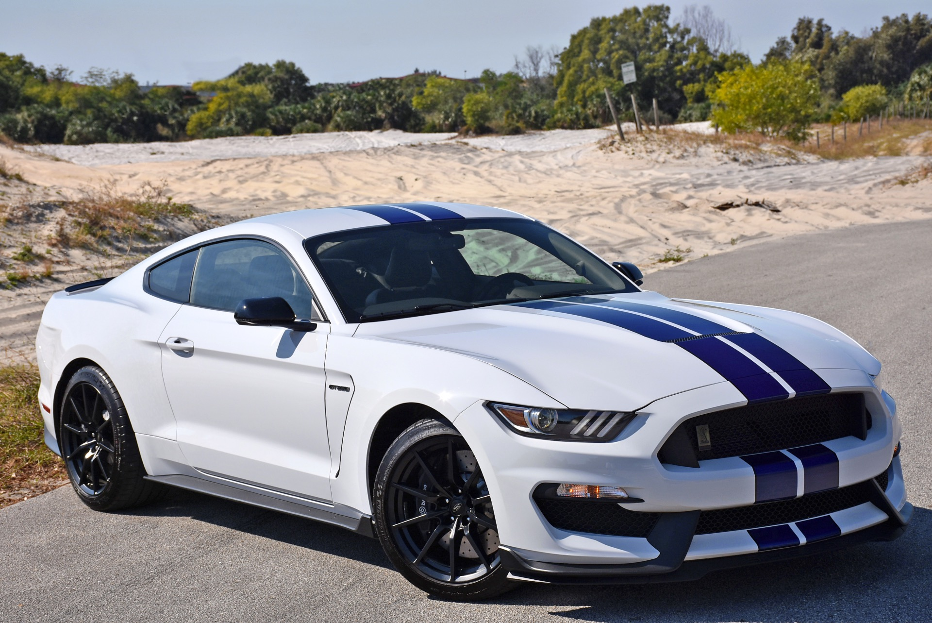 2016 ford mustang shelby gt350 shelby gt350 stock 5911 for sale near lake park fl fl ford. Black Bedroom Furniture Sets. Home Design Ideas