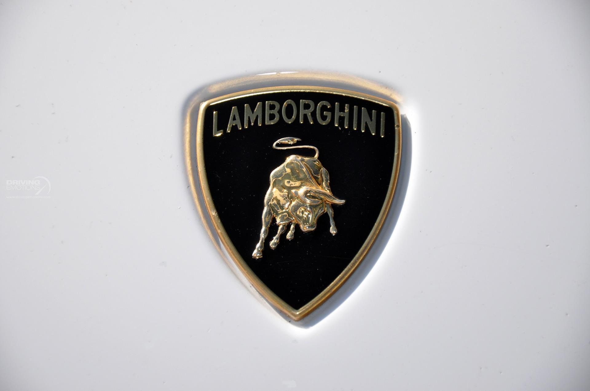 Delightful Used 2008 Lamborghini Gallardo Spyder Spyder | Lake Park, FL